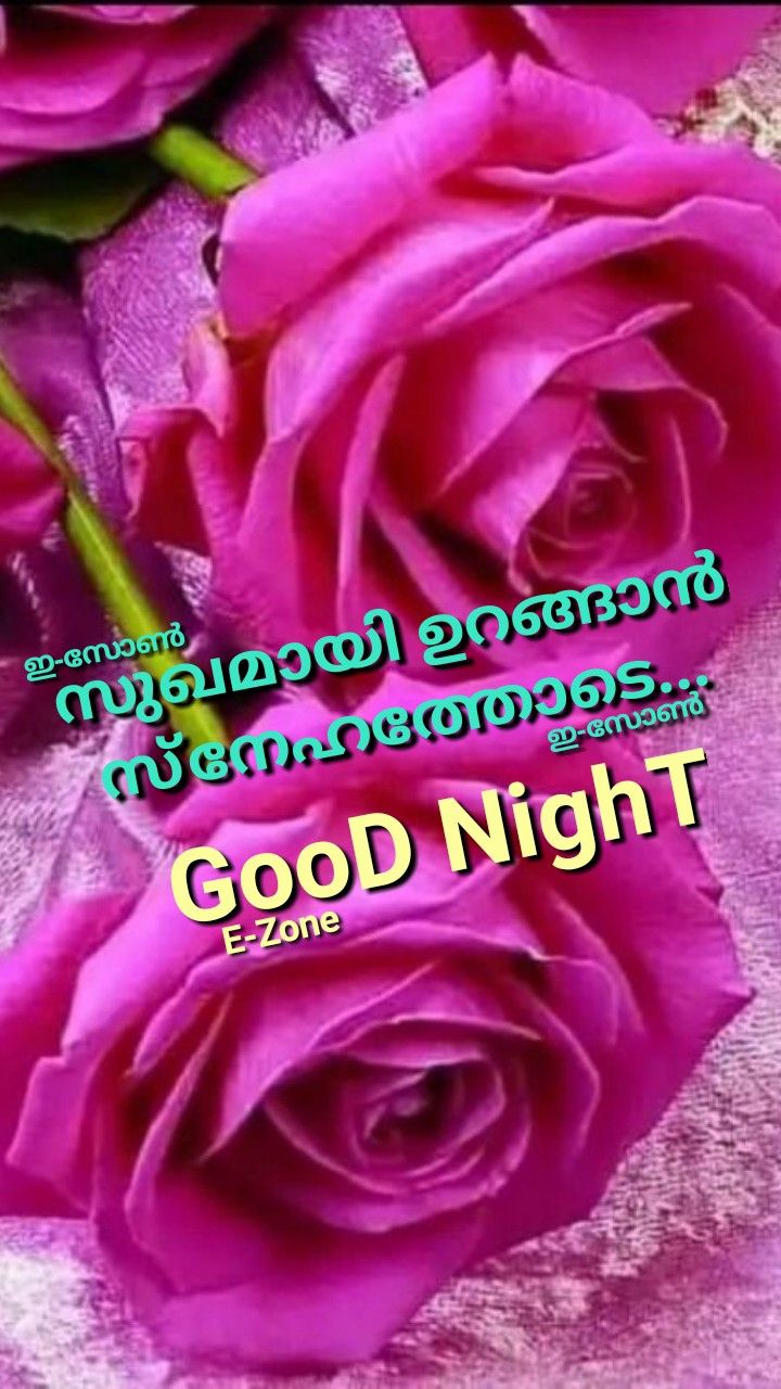 Pin By Eron On Good Night Malayalam Good Night Quotes Night Quotes Beautiful Flowers