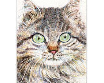 787 Beste Afbeeldingen Over Cats Art Illustr. Etc. 1 Op Pinterest - Gestreepte Katten Katten En ...