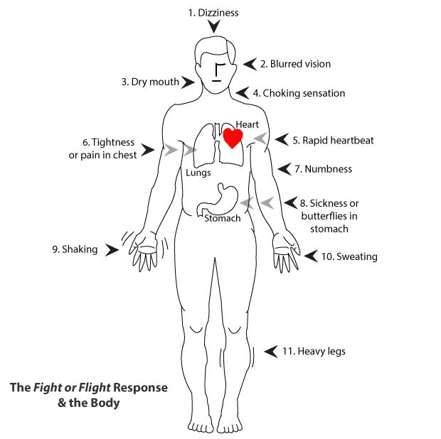 Physical Body Reactions - SilverCloud