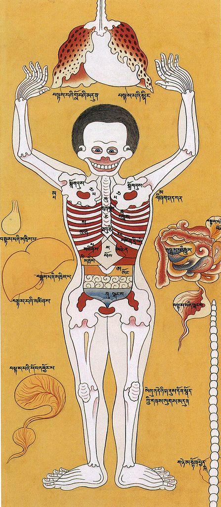 Manas Vidya: Tibetan Chakras and Anatomy