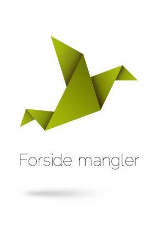 Forfatter: Peggy Andersson, Titel: Bogslottet 1, Hemmelige lektier, Pris: DKK 454,00, Kategori: Bøger, Format: spiralryg