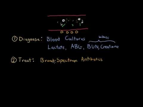 Septic shock - diagnosis and treatment - YouTube