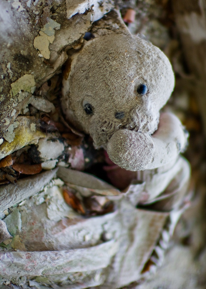 Lost   Forgotten   Abandoned   Displaced   Decayed   Neglected   Discarded   Disrepair    Toys of Pripyat and Chernobyl