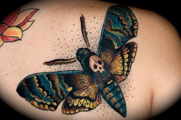 Death's Head Hawk Moth on our good friend Taylor