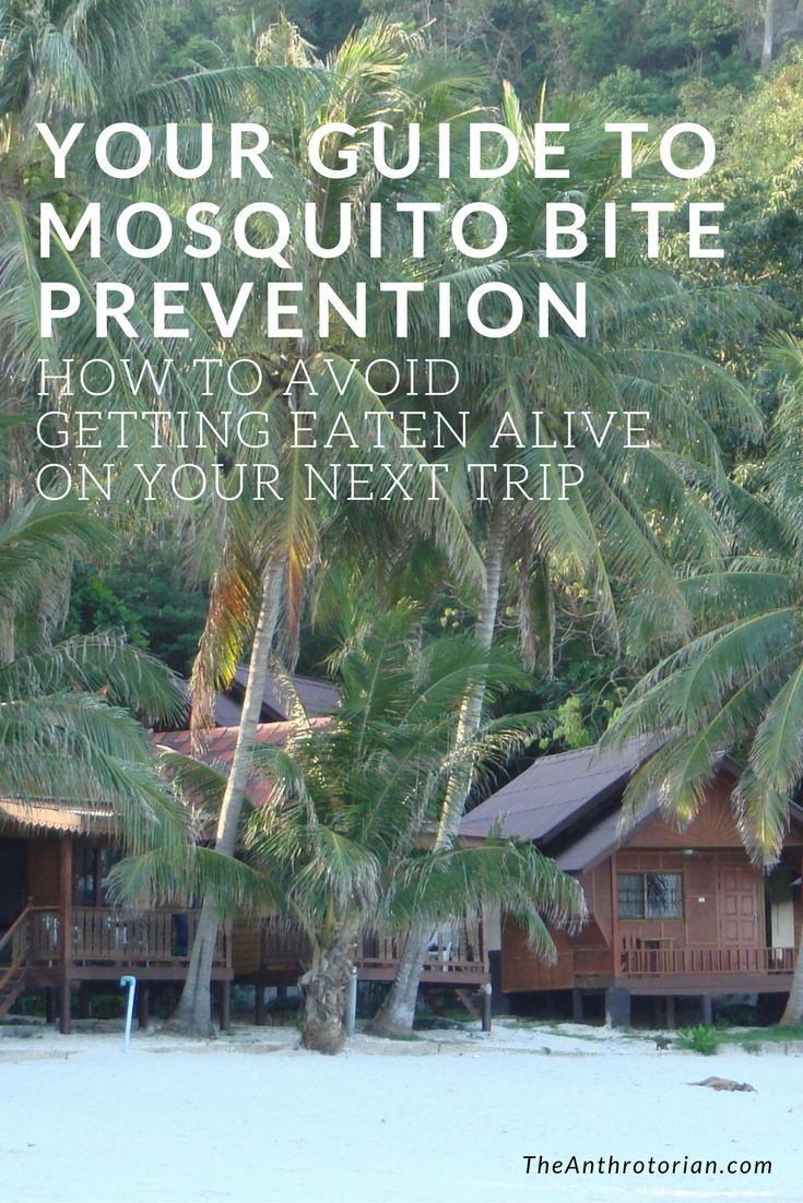 how to prevent mosquito bites when travelling  avoid mosquito bites  travel tips  travel