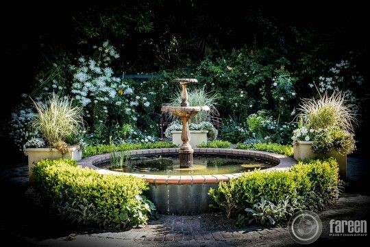 'Parnell Rose Gardens'- 85 Gladstone Road, Parnell, Auckland, New Zealand  For more photos check out my photography page on Facebook, see link on my bio. You can also follow me on 500px.com/FareenKhan  #fareensphotography #photographer #photography #nz #newzealand #aotearoa #TāmakiMakaurau #auckland #parnell #parnellrosegarden #fountain #waterfountain #nature #green #vignette #blackvignette #beautifuldestinations