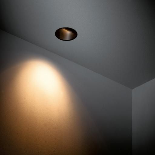 Modular Lighting Lotis Asy 82 MR16 Noir diamètre 82 mm à 69€