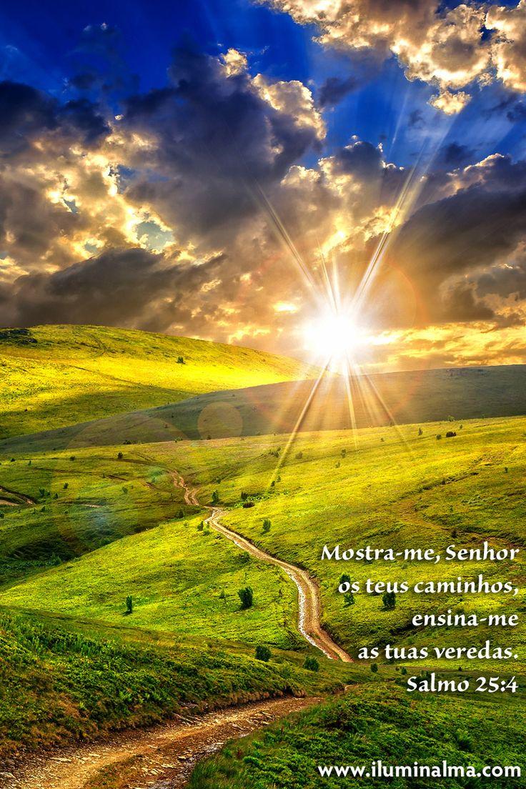 Mostra-me, Senhor, os teus caminhos, ensina-me as tuas veredas.