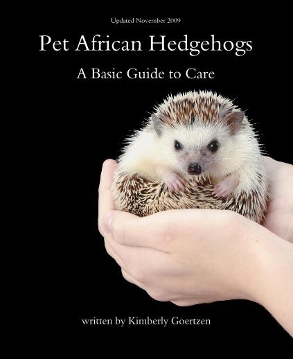 Pet African Hedgehogs - A Complete Guide To Care