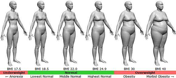 Het perfecte vrouwelijke lichaam, welk beeld komt er dan in je op? De laatste tijd ben ik op een ontdekkingstocht naar het perfecte vrouwelijke lichaam. Ik ben namelijk te licht. Ik moet/wil ongeveer 2 kilo aan vet er bij en 2 kilo aan spieren. En uiteraard wil ik er dan nog steeds mooi uit zien. …