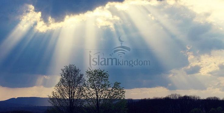 Signs of prophethood. know them in : http://en.islamkingdom.com/Know-about-Islam/The-Path-to-Happiness/Messengers-and-Prophets/Signs-of-prophethood #happiness