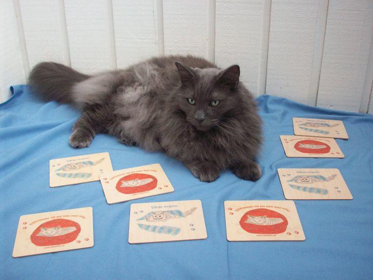 Bamse vilar gött bland de roliga och fina skyltarna. Finns med både Simba och Bamse som motiv på www.katt4you.se