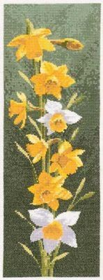 Gallery.ru / Фото #1 - JCDF469 Daffodils - Chispitas