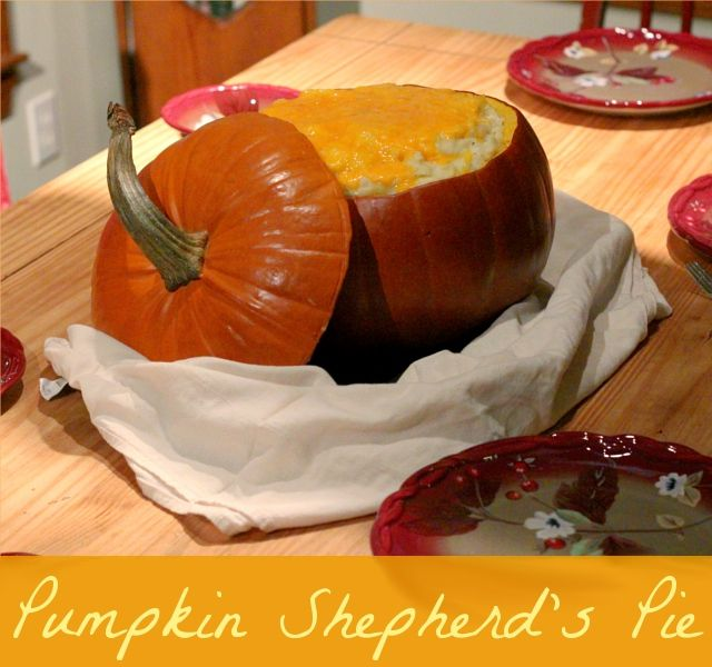 Shepherd's Pie - made in a pumpkin! Great autumn meal for a crowd.