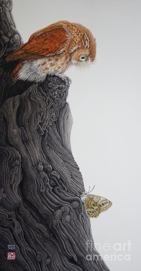Owl art by Hiromi Gibbs