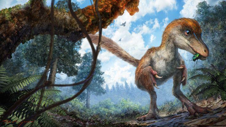 Gevederde dinostaart teruggevonden in barnsteen . Een reconstructie van een kleine coelurosauriër in het bos. Illustratie: Chung-tat Cheung