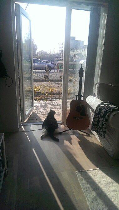 Going outside?