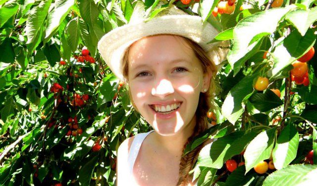 2015 Cherry Picking at Klondyke Cherry Farm   Pick Cherries in Cape Town, Farms in Ceres, Family Activities in the Western Cape, What to do with Your Kids this Holiday 10-December-2015