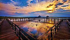 Lotus Lake, Khao Sam Roi Yot National Park (Thailand)