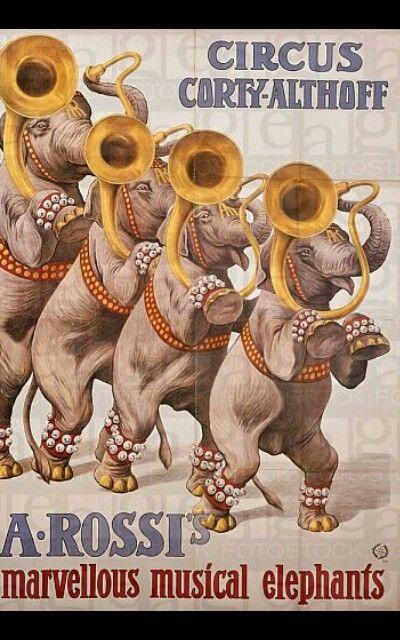 Questo poster del Circo Corty-Althoff rappresenta il numero di elefanti musicali di Alfredo Rossi (figlio di Francesco). Lo stesso numero verra' poi presentato dalla sorella di lui Adele, moglie di Pierre Althoff.