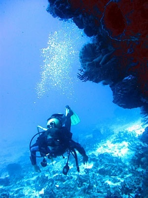 Scuba Diving in Rivera Maya - Mexico #PrimerasVecesbyCyzone