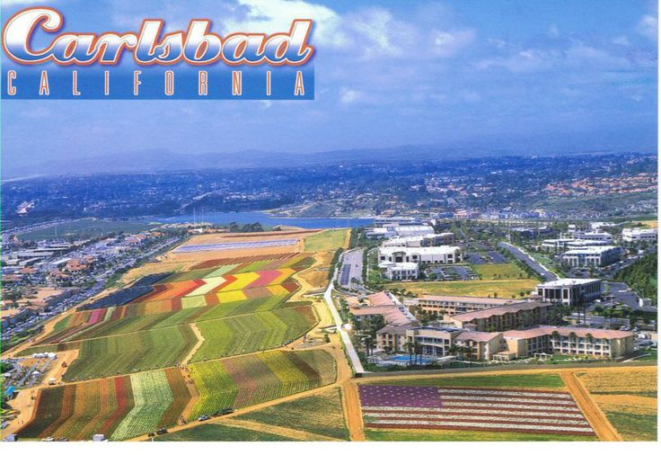Top Things to do in Carlsbad - in beautiful North County San Diego, California include: Surfing, Stand-up Paddle board, Carlsbad Food Tours, Biking...