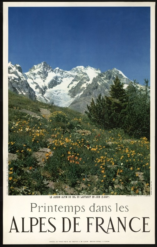 """LE JARDIN ALPIN DU COL DU LAUTARET EN JUIN (2.058M) /PRINTEMPS DANS LES / ALPES DE FRANCE"" . 1956 Archives nationales, 20050205 art. 255 © Archives nationales, France"