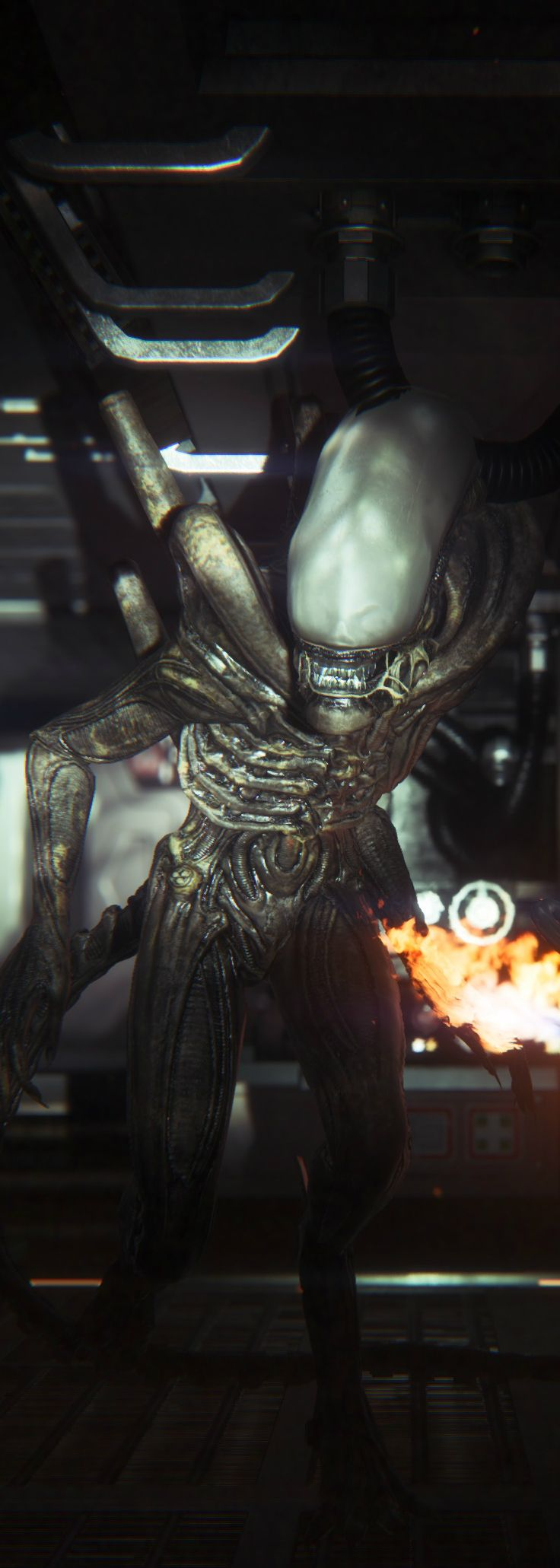 Alien Isolation | Scary Sh*t