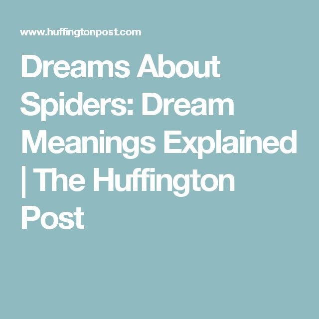 Dreams About Spiders: Dream Meanings Explained | The Huffington Post