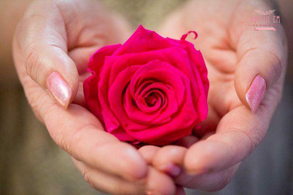 Messieurs envie de faire livrer une rose votre bien for Livrer une rose