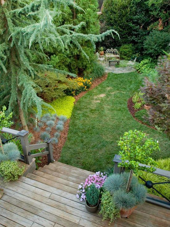 10 best images about landscaping on pinterest trips for Simple landscaping plants