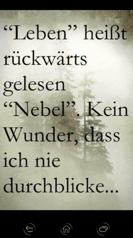 Leben = Nebel