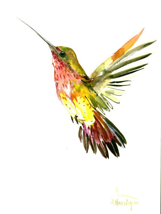 Flying Hummingbird art original watercolor painting 12 x 9 in by ORIGINALONLY on Etsy