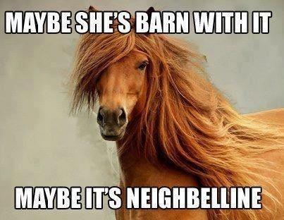 Horse meme Maybelline