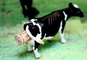 Un laser per studiare le puzze delle mucche e mitigare l'effetto serra