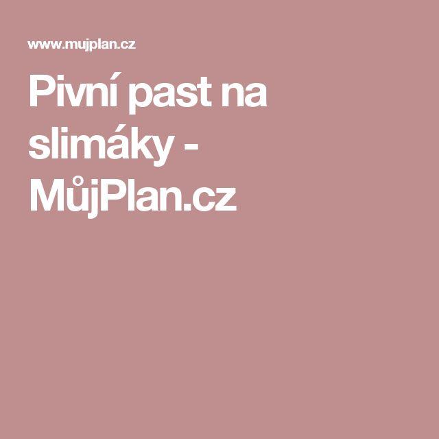 Pivní past na slimáky - MůjPlan.cz