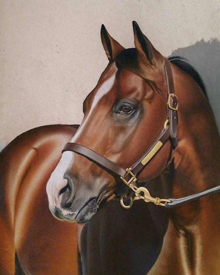 Praise da Lort I'm almost done 😭😭😭😭💀💀  .  .  .  .  #art#equestrian#horsesofinstagram#photorealism#hyperrealism#horse#quarterhorse#barrelracing#barrelhorse#barrelracer#rodeo#drawing#equineart#creative_animalart#artofdrawingg#aartistic_dreamers#worldofpencils#art_spotlight#art_collective_mag#sketch_daily#daily_art#pastel#painting#artistsofinstagram