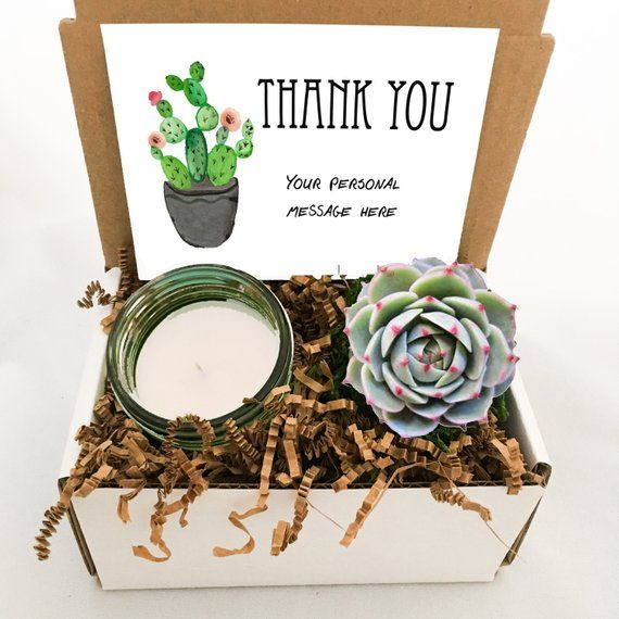 Succulent /& Candle gift Thank you gift box Thank You Live Succulent gift box Best Friend Gift Appreciation Gift Thank you gift