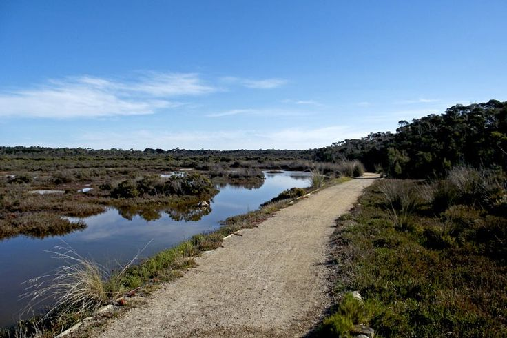 Warringine Park - The Official Website of Mornington Peninsula Tourism