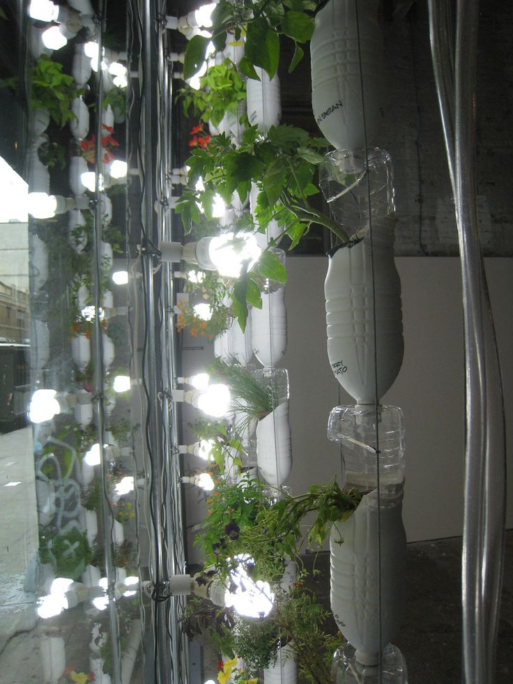1000 Ideas About Vertical Hydroponics On Pinterest