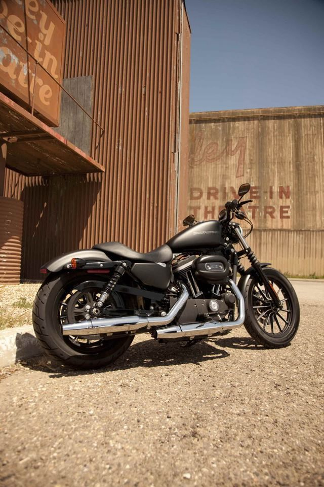 In love - Harley-Davidson Iron 883