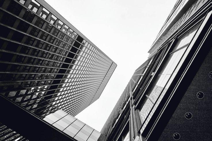 Toronto-Dominion Centre // Ludwig Mies van der Rohe //