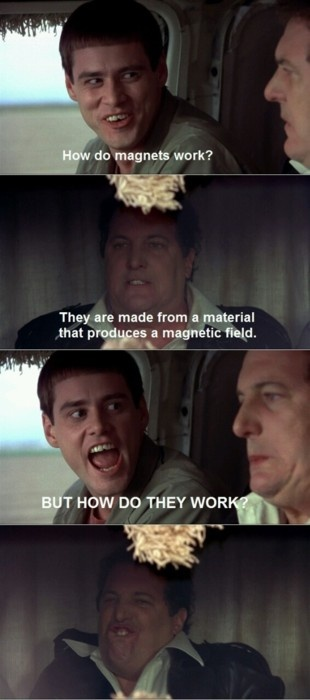25 best ideas about dumb and dumber on pinterest dumb