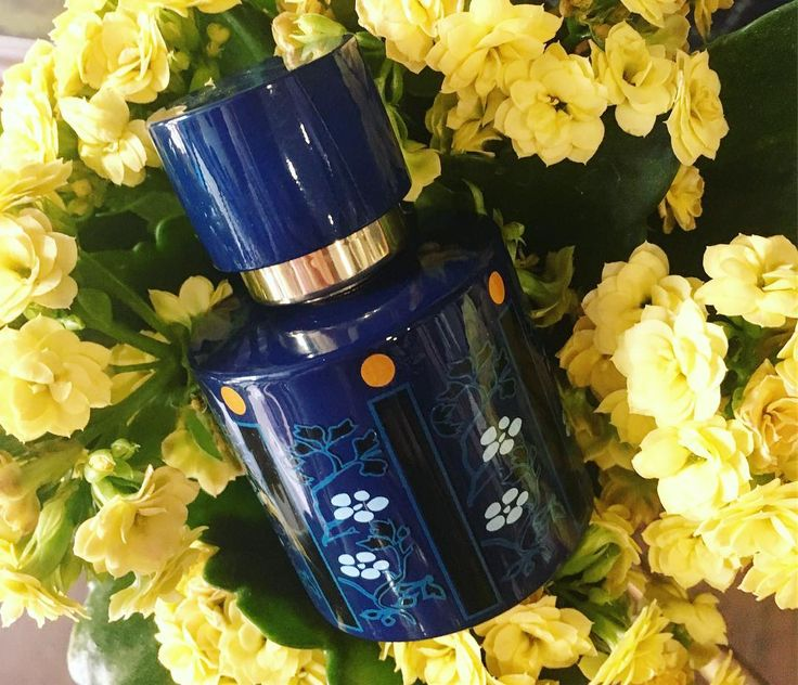 #Fleur #Nocturne is a #fragrance by the house of #Isabey presented in 2009 as a modern interpretation of #perfume #BleudeChine from 1925. The composition incorporates #mandarin #whitepeach and #apricot #blossom in top notes. A heart hides #jasmine #gardenia and #magnolia #FleurNocturne #panouge #rosinaperfumery #giannitsopoulou6 #glyfada #athens #greece #shoponline : www.rosinaperfumery.com