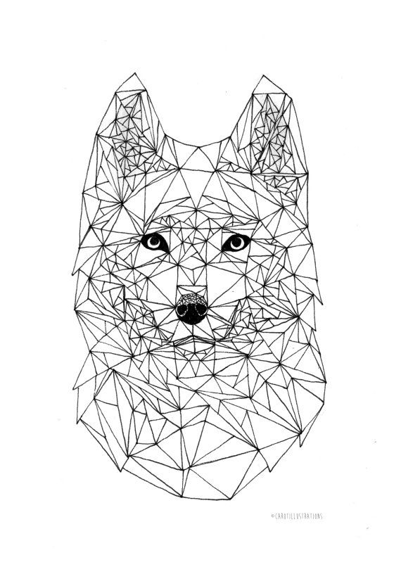 3d Line Drawing Game : Wolf geometric pen illustration wall art cm