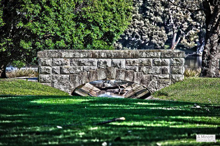 Centennial Park - Sydney, Australia by A. Minotti on 500px