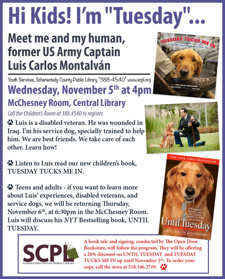 """We're tremendously excited for the next """"Tuesday Tucks Me In"""" program on Wednesday, November 5, 2014, at Schenectady County Public Library! — with Tuesday in Schenectady, NY."""