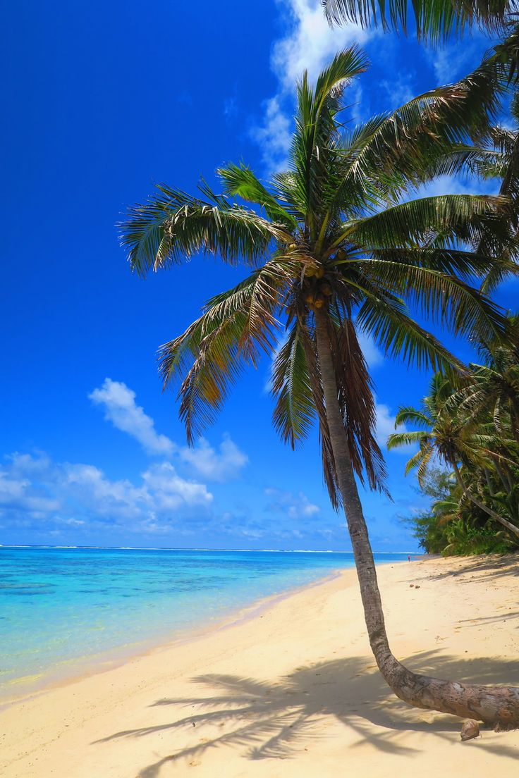 Titikaveka Beach in Rarotonga - the best beach on the island!