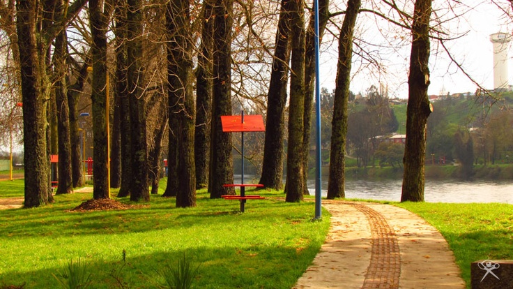 """Park in Osorno"", Chile. By REG."