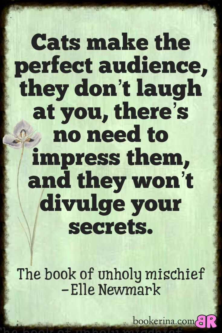 The Book of Unholy Mischief by Elle Newmark. A great fantasy fiction read.bookerina.com